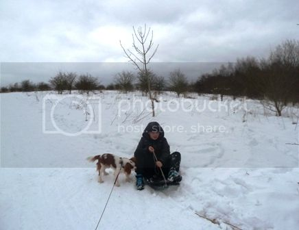  photo SnowyDay_zps30ba3c99.jpg